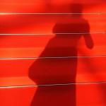Mon ombre sur les marches de Cannes 2017.